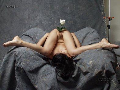 genital flora