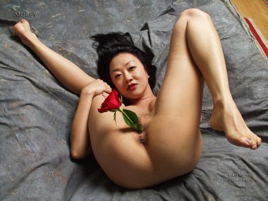 Chinese Pussy Flower